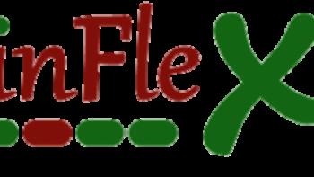 Permalink auf:Reflexintegration nach Kinflex®